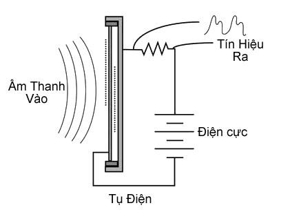 nguyên lý hoạt động condenser microphone